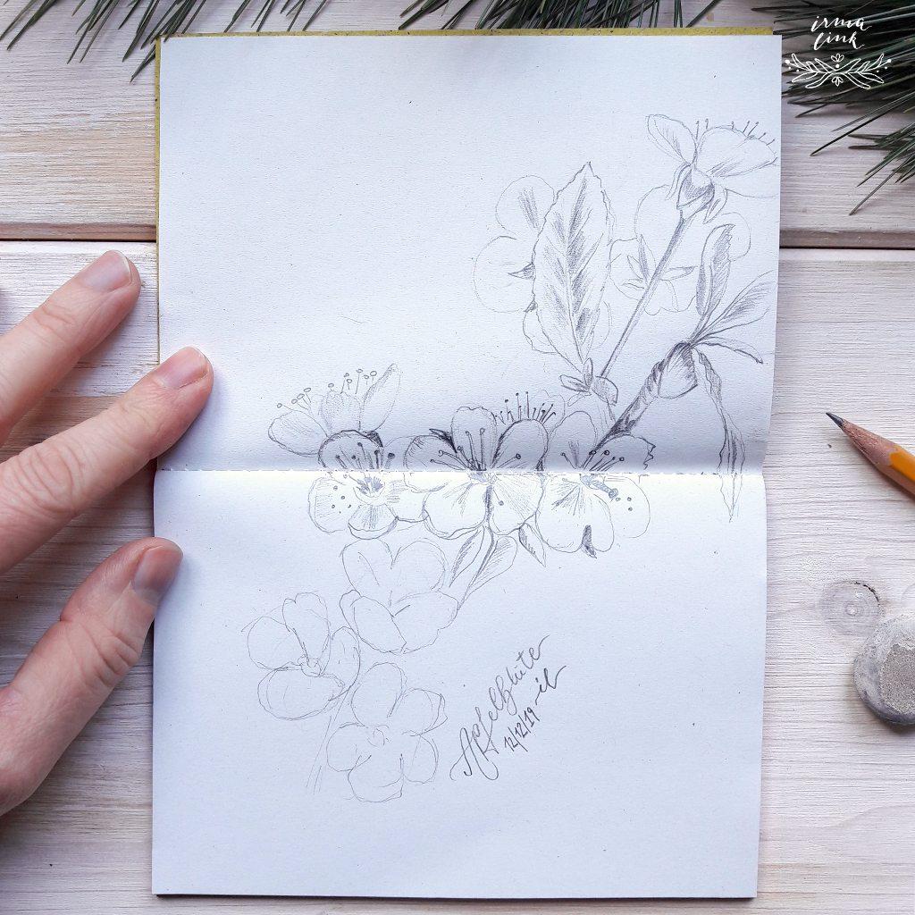 Botanical Diary Skizze Apfelpblüte Veganes Skizzenbuch irma link Artist