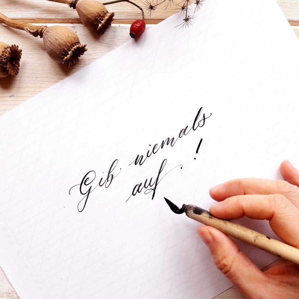 Onlinekurse Modul 3 Fortgeschritten Moderne Kalligraphie online lernen irma link artist