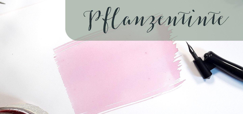 Pflanzentinte Kalligraphie schreiben, Material Tipp creativity Blog irma link Kalligraphin