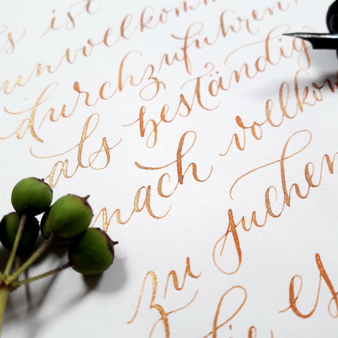 Moderne Kalligraphie Community Barock Tinte Community Instagram irma link