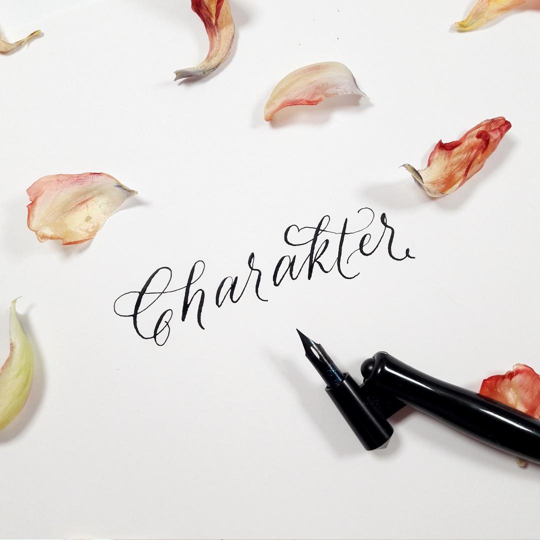 Moderne Kalligraphie lernen eigenen Stil finden irma link kalligraphie