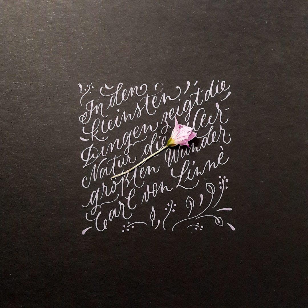Moderne Kalligraphie Unikat Auftragsarbeit Sprüche Gedicht schreiben irma link