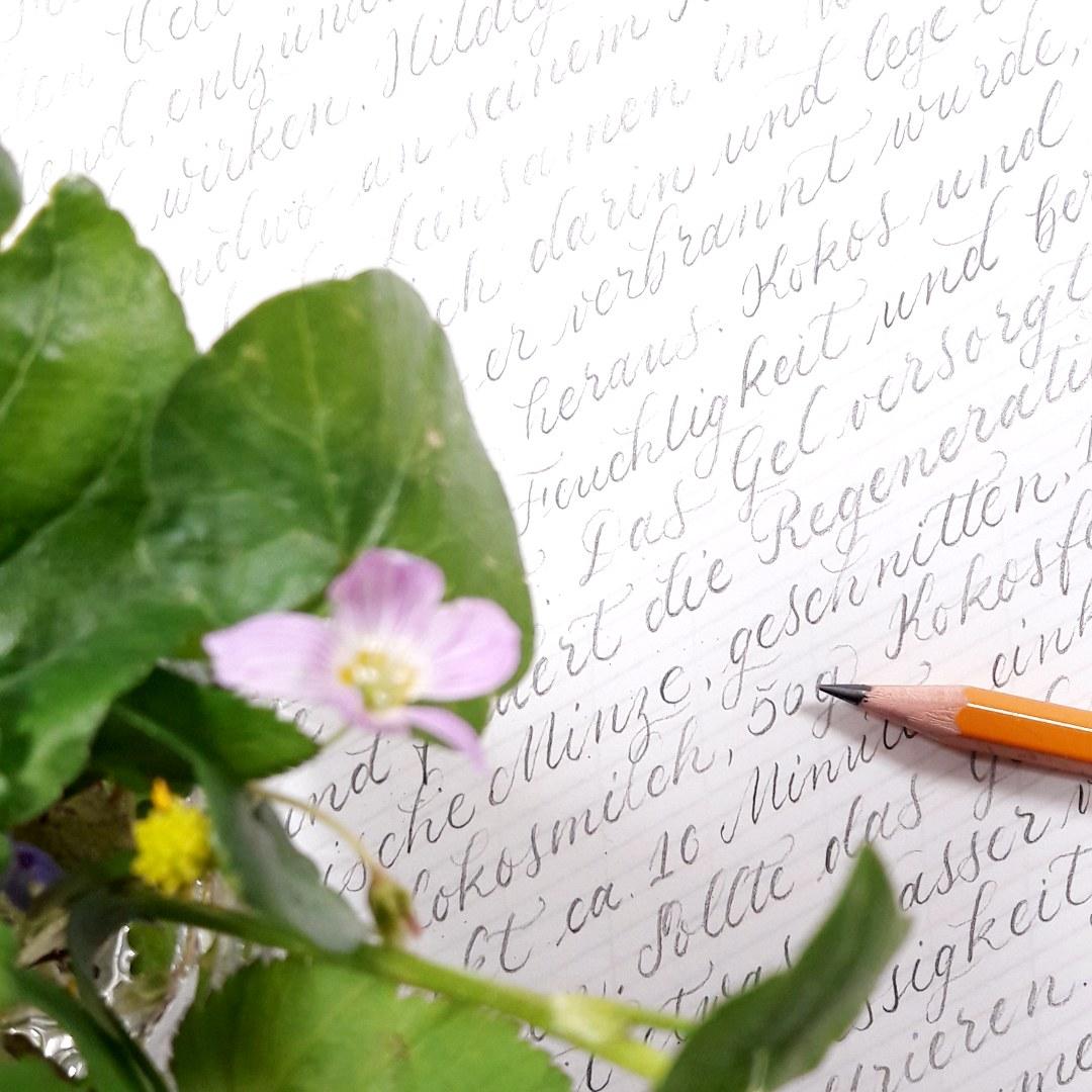 Moderne Kalligraphie Unikat Auftragsarbeit Texte Briefe schreiben, irma link
