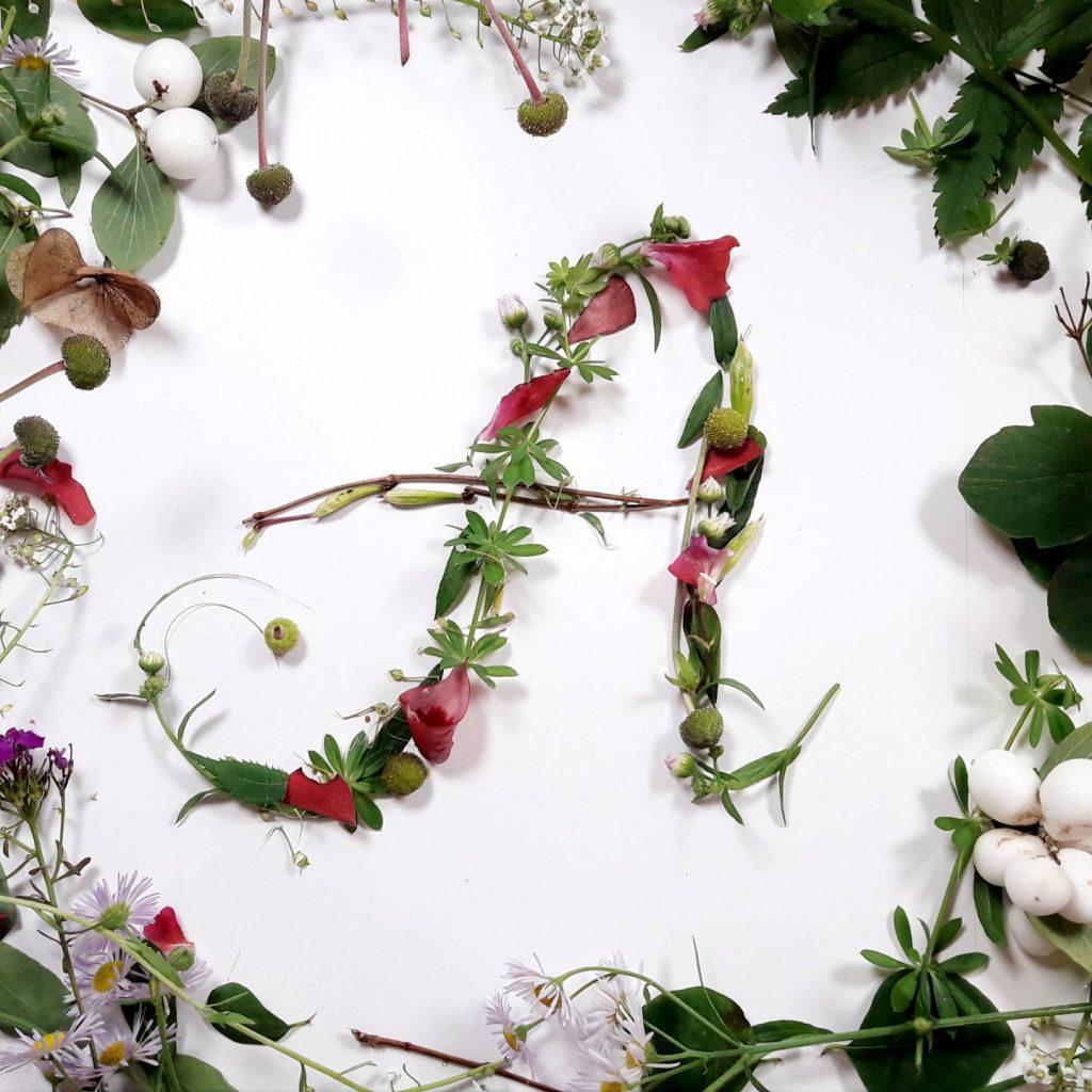 pflanzen-alphabet-lettering-grossbuchstabe-a-irmalink-kalligraphie