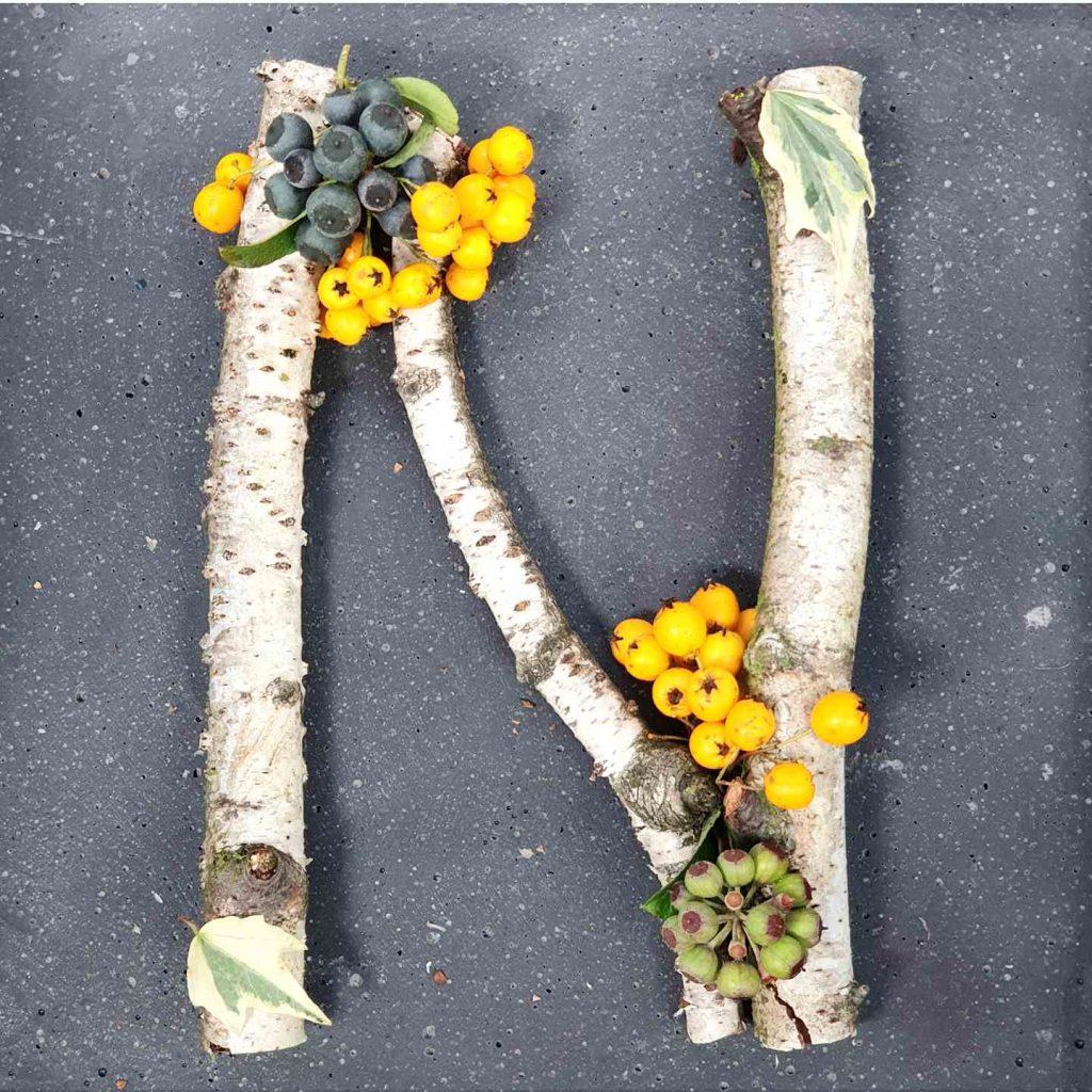 pflanzen-lettering-grossbuchstabe-n-viviane-irmalink-kalligraphie