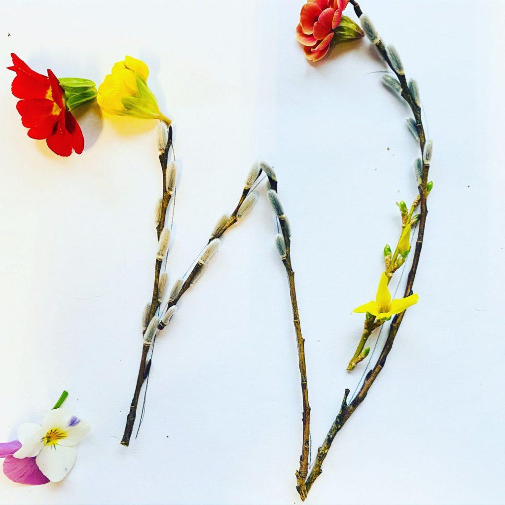 pflanzen-lettering-grossbuchstabe-w-marianne-irmalink-kalligraphie